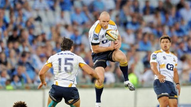 Les Brumbies brillent - Rugby - Super 14