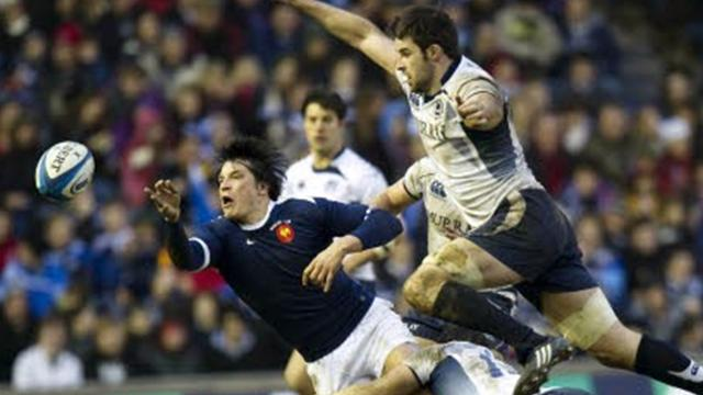 Les pronostics de Midol - Rugby - 6 Nations