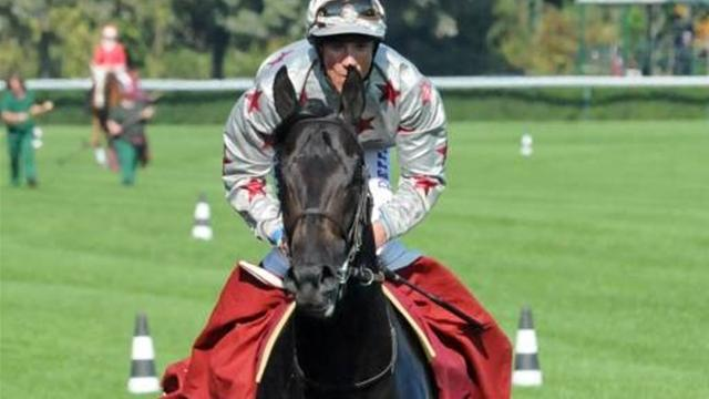 Dabirsim set for Longchamp - Horse Racing