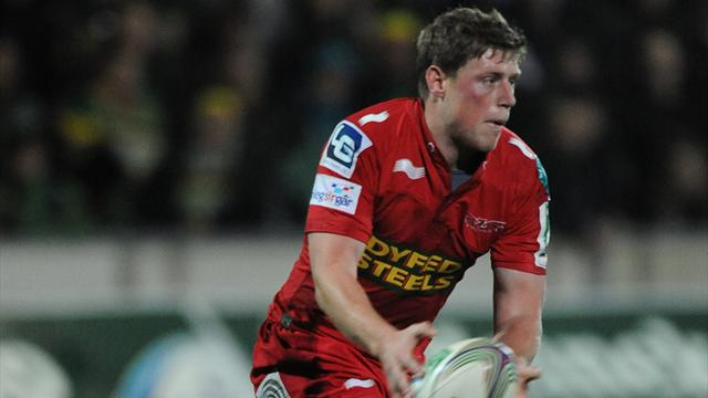 Scarlets fight for draw - Rugby - RaboDirect Pro12