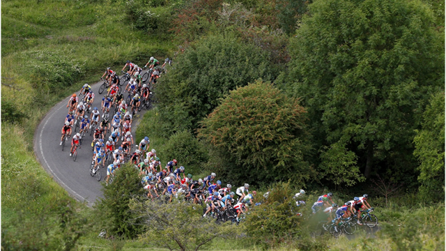 Box Hill Guide - Olympic Games