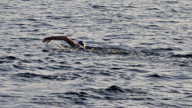 Swimmer abandons journey - Swimming