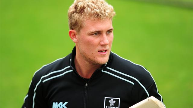 Hamilton-Brown takes leave - Cricket - County