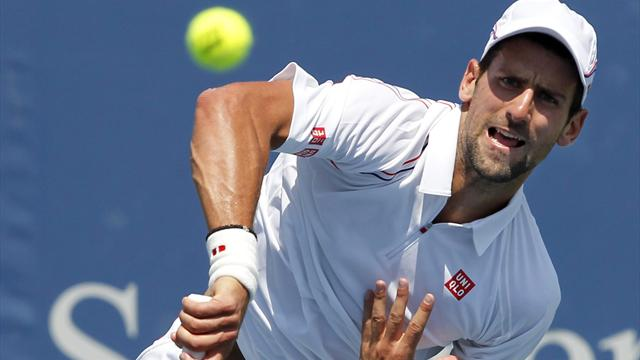 Djokovic sets up Del Potro semi-final in Cincinnati