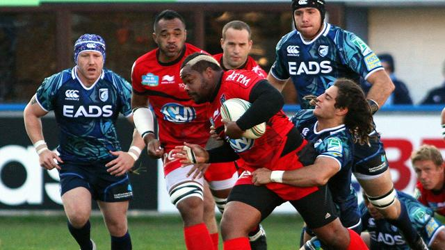 Toulon taillé pour l'Europe - Rugby - Coupe d'Europe
