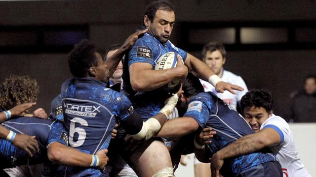 Montpellier, aller plus haut - Rugby - Top 14