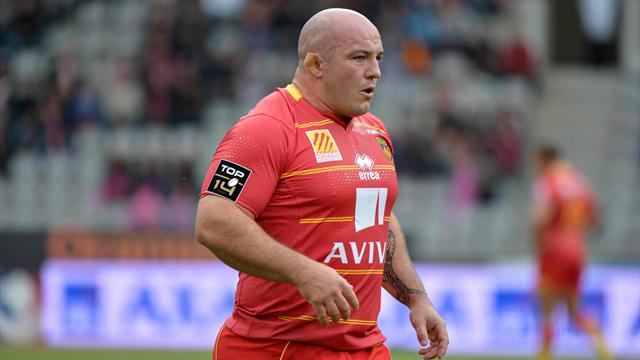 Perpignan: L'ambition catalane  - Rugby - Top 14