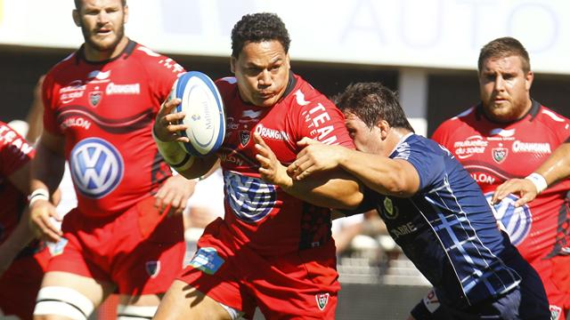 Toulon reste serein - Rugby - Top 14