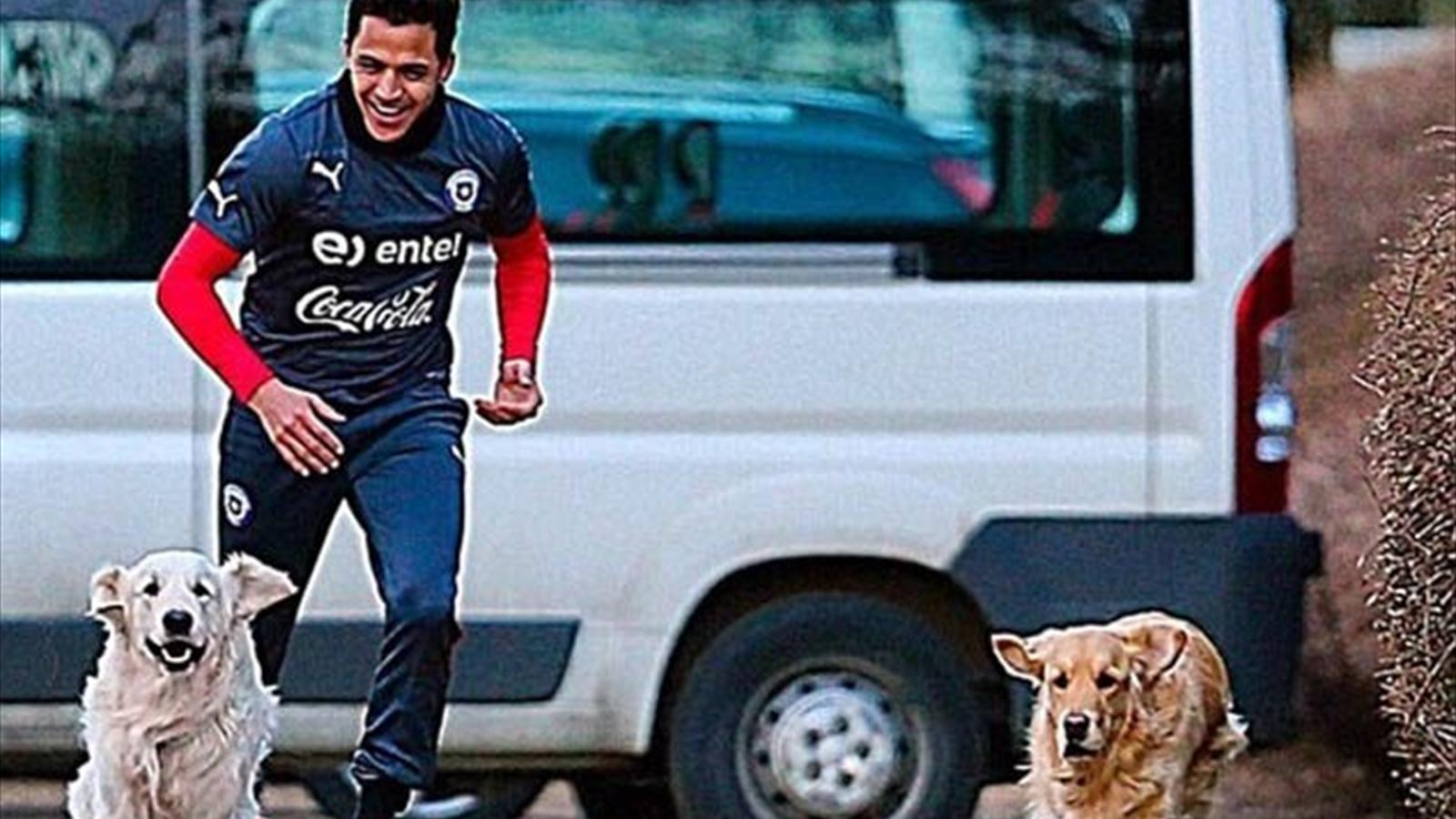 Alexis Sanchez poses with his dogs (Instagram)