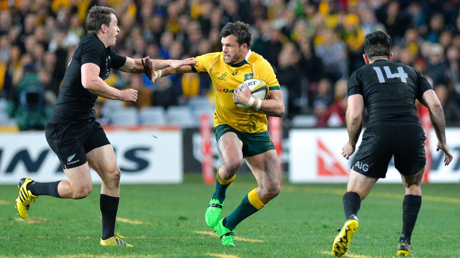 Adam Ashley-Cooper (Australie) face aux All Blacks - Août 2015