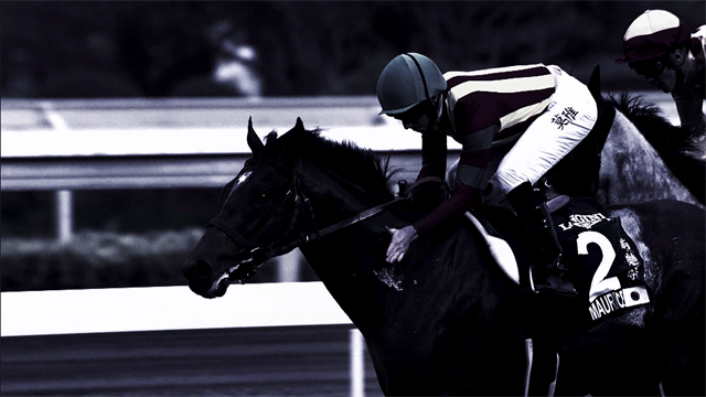 Longines Hong Kong: The richest race rolls into town